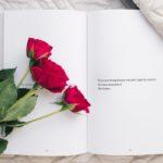 Beste Boeken Over Zelfliefde [Top 10] [2021 Update]