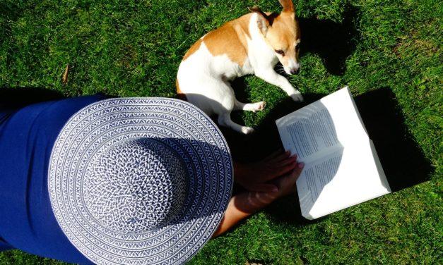 Beste Boeken over opvoeden hond & puppy [Aanraders!]
