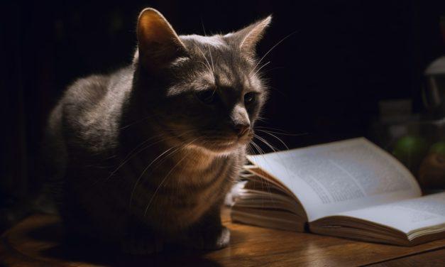 De Allerbeste Boeken over huisdieren [Aanraders!]