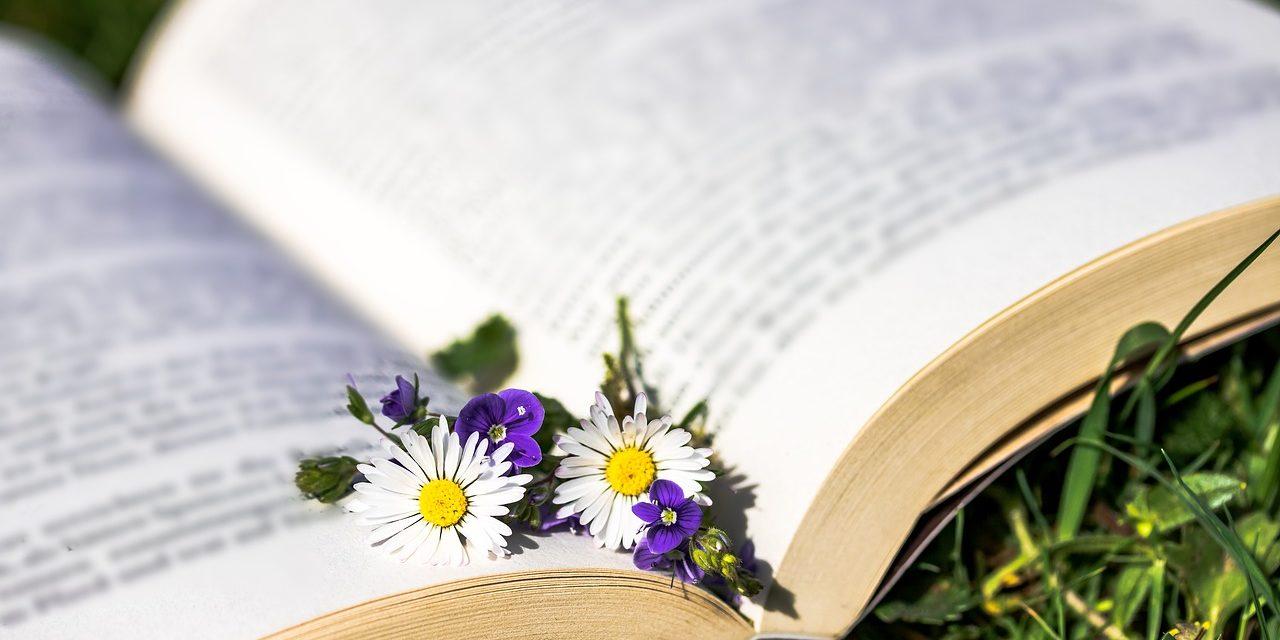 Beste Boeken Over Bloemen & Planten [Top 10]