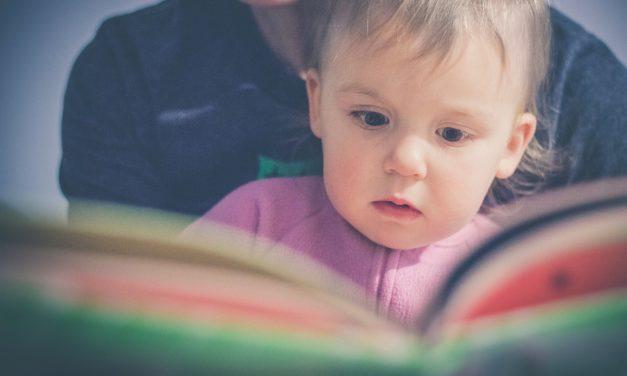 Beste Flapjesboeken Voor Peuters [Top 10]