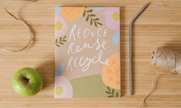 Top 10 Beste Boeken Over Duurzaamheid [2021 Update]