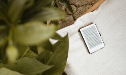 Beste E-reader Beschermhoesjes / -Sleeves / -Etuis / -Covers